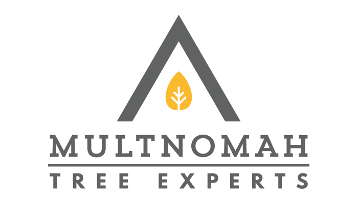 Multnomah Tree Experts Full Color Logo